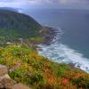 Thumbnail image for GO: Cape Perpetua Scenic Area