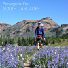 Thumbnail image for Hiking in the Goat Rocks: Snowgrass Flats – Goat Lake Loop