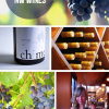Thumbnail image for Wine Tasting: Getting to Know Northwest Wines