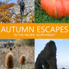 Thumbnail image for Ready for Fall? Autumn Escapes in the Pacific Northwest