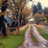 Thumbnail image for Autumn Cheap Sleeps: Affordable Getaways in the Pacific Northwest