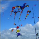 long beach kites