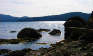 Northwest TripFinder San Juan Islands