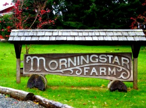 Morningstar Farm Sign